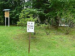 Shikachuui120822