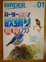Birder101218