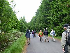 Fnshinrinsouken120609