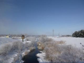 Teitenshukubai140208