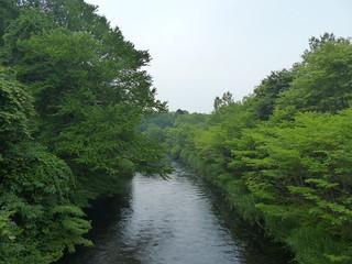 Teitenchitosegawaohayo140726