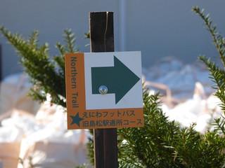 Footpass161015c
